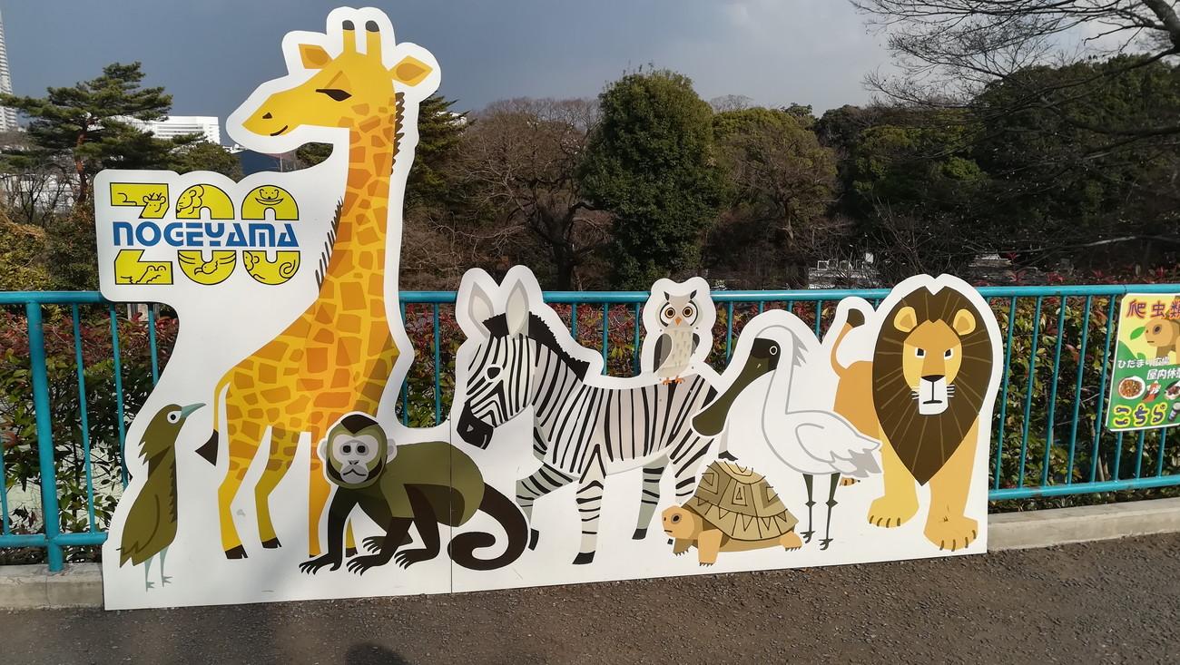 野毛山動物園 写真スポット
