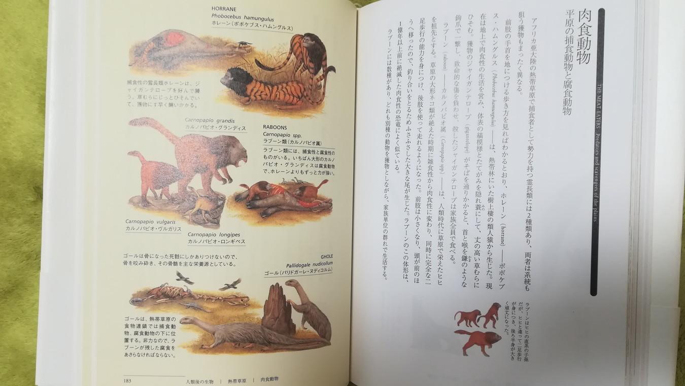 【読概】アフターマン 人類滅亡後の地球を支配する動物世界