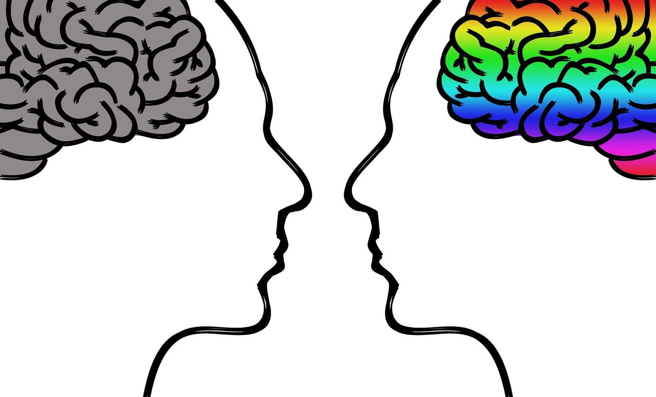 【書評】唯脳論[ヒトが人である所以]