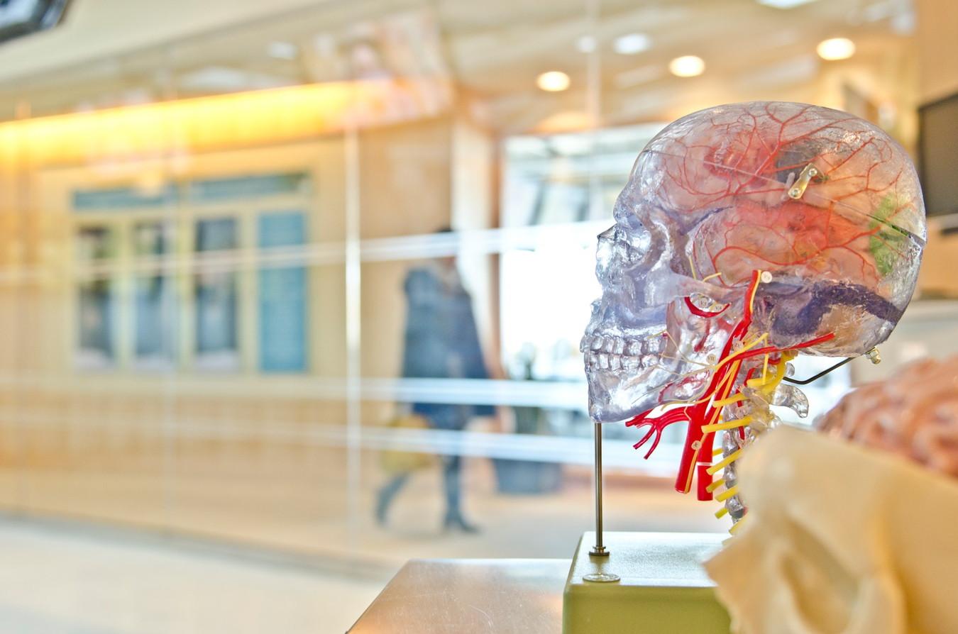 【書評】30歳からの「東大脳」のつくり方[脳に良い数多の習慣]