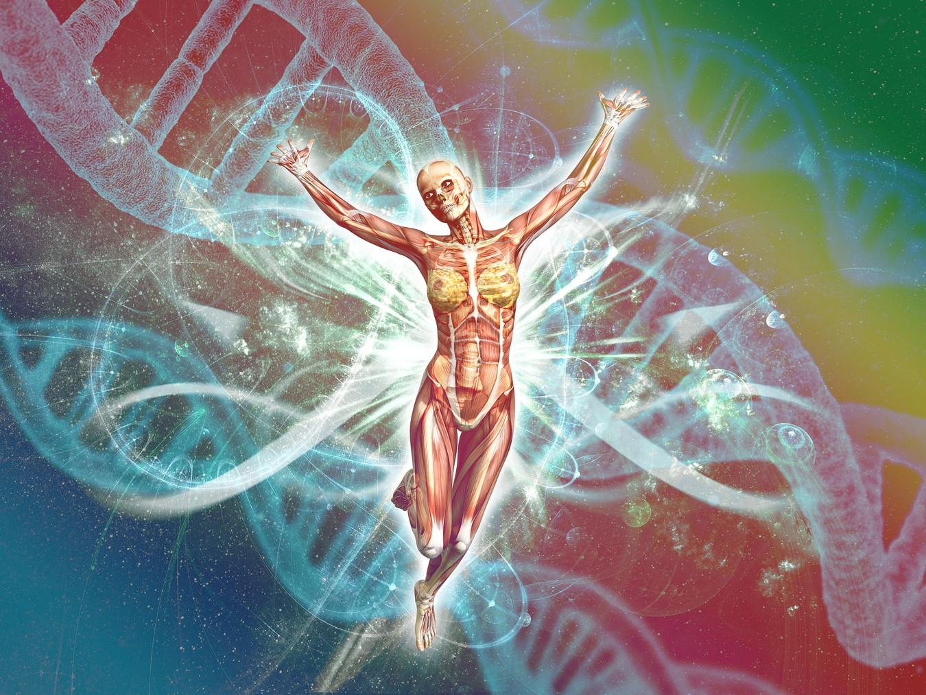 【書評】細胞の中の分子生物学[細胞内で働く巧妙なメカニズム]